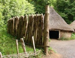 Частокол, деревянный тын
